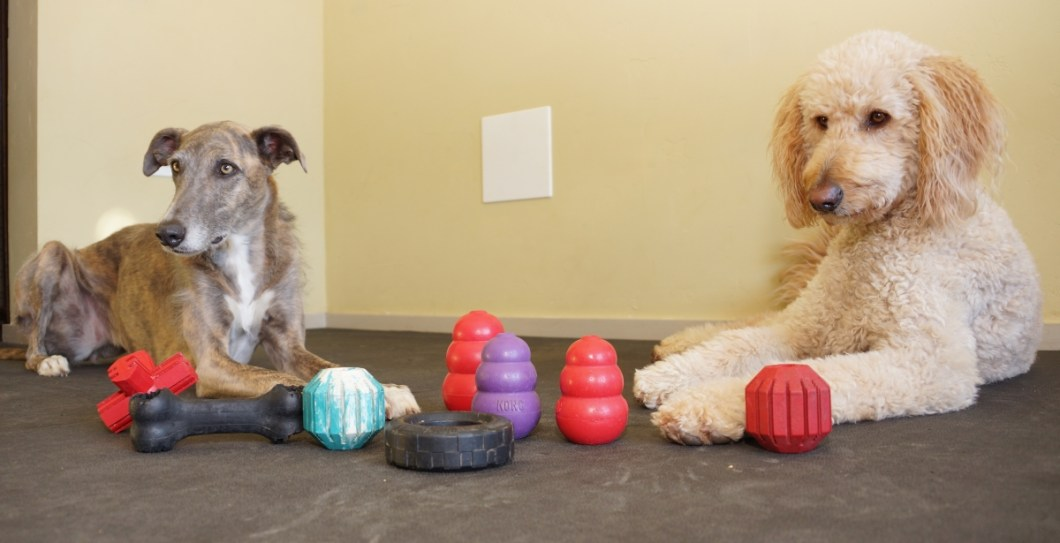 You can't go wrong with these Kong toys