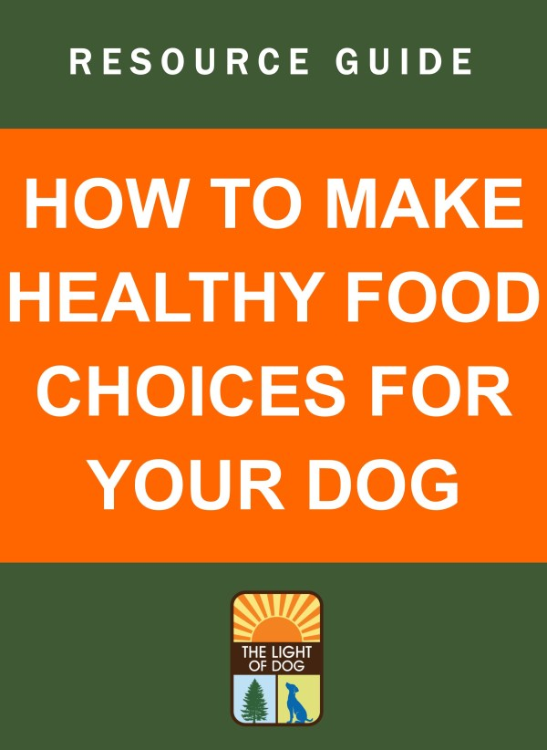 How To Make Healthy Food Choices For Your Dog