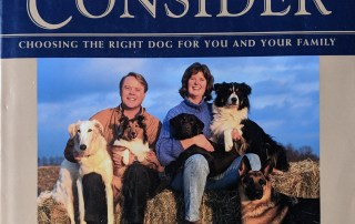 Paws To Consider by Brian Kilcommons and Sarah Wilson