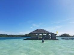 Guimaras' Floating Cottage