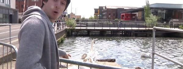 swans student