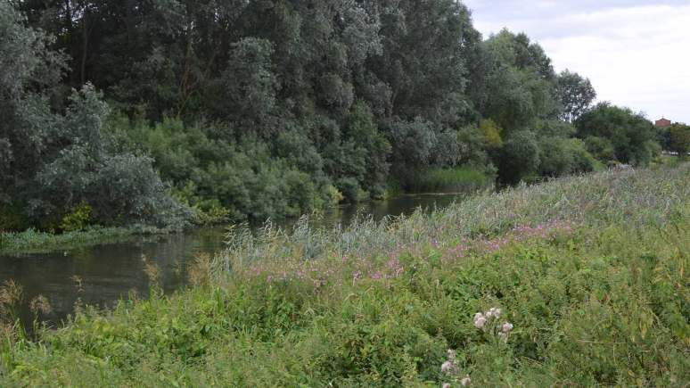 River Witham near Spa Road in Lincoln. Photo: File/The Lincolnite