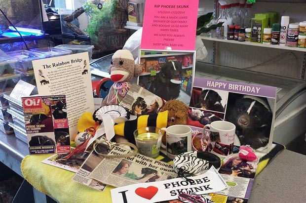 A memorial has been set up in the pet shop for people to leave messages.