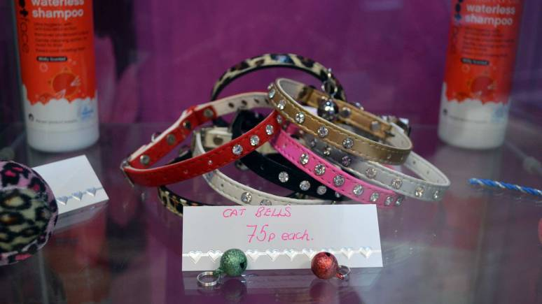 A range of cat collars.