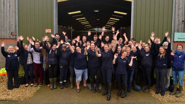Some of the team at Bransby Horses near Lincoln. Photo: Steve Smailes for The Lincolnite