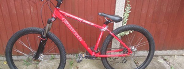 The bike was locked up outside the Lincoln High Street Primark store when it was stolen.