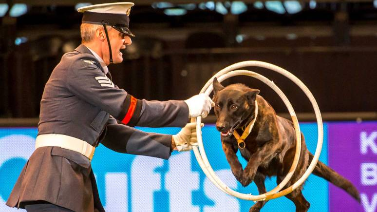 Sergeant Andy Walker with Nora at Crufts 2015