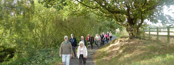 NK Social Strollers enjoying one of the North Kesteven countryside routes.