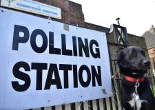 Lincoln records 32% turnout at European elections