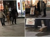 Outrage as men seen reportedly beating dog on Lincoln High Street
