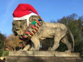 Lincoln art ninjas give park guardian a Christmas makeover