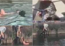Watch: Man rescues dog from Brayford