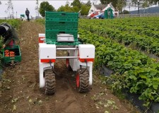 University of Lincoln builds robot fruit pickers