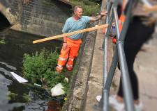 Workers rescue injured swan on Brayford Pool