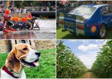 Dragon boat race and vintage vehicle rally in Lincoln this weekend