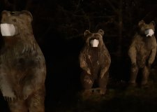 Bear necessities: Lincoln park characters 'protected' from coronavirus