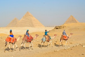 A train of camels and tourists in front of the Pyramids of Giza, Cairo, Egypt.