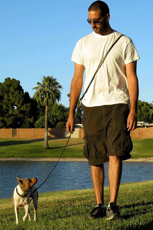 Leather Dog Leash Hands Free Leash Dog Training Leash Leather Leashes