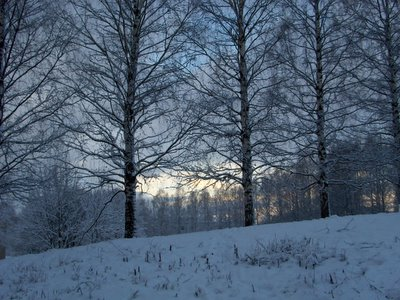 Winter landscape outside Helsinki (from Alex Ross)