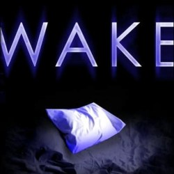Book Review:  Wake by Lisa McMann