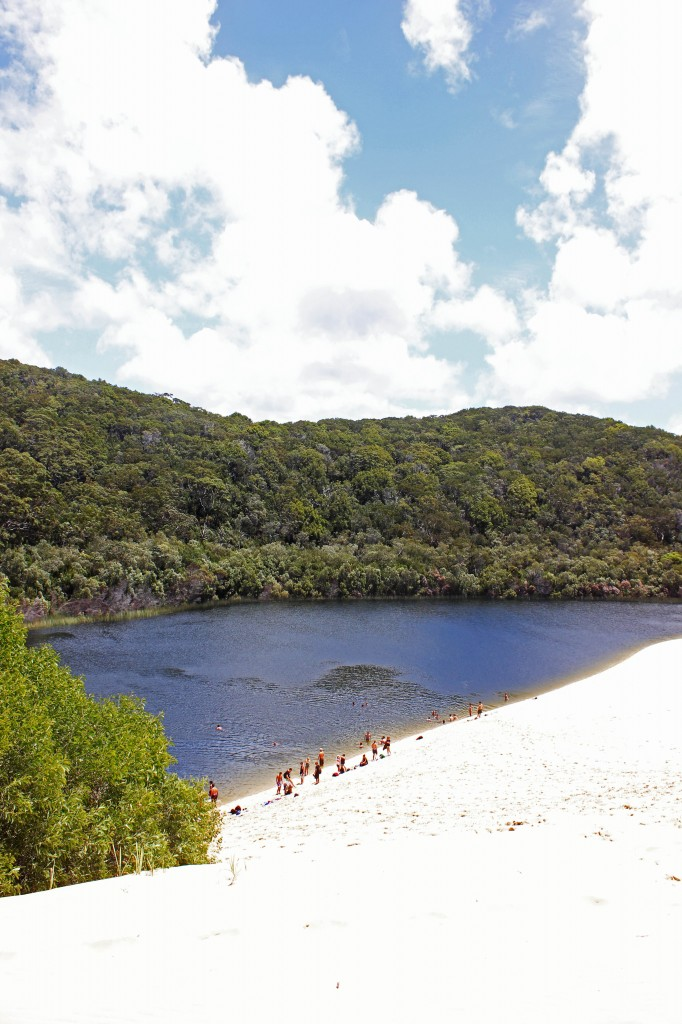 East Coast Australia Fraser Island