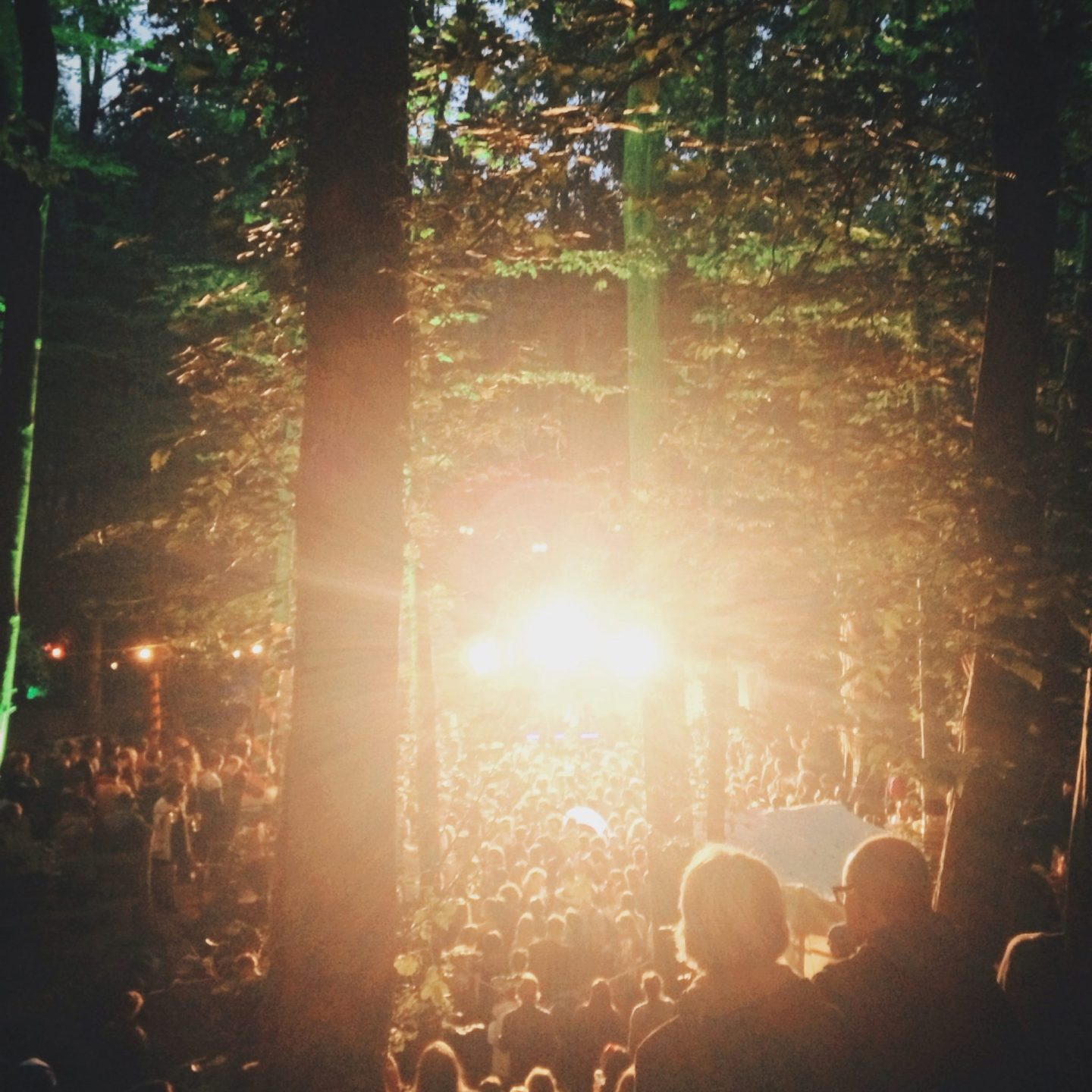 In The Woods Festival Playlist & Video