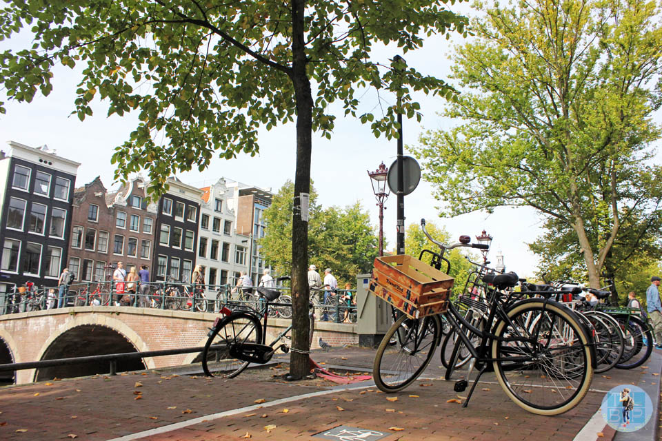 25 Photos of Amsterdam in Autumn