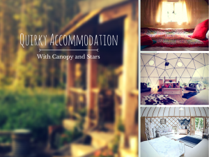 quirky accommodation with Canopy and Stars