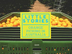 Little Stories1