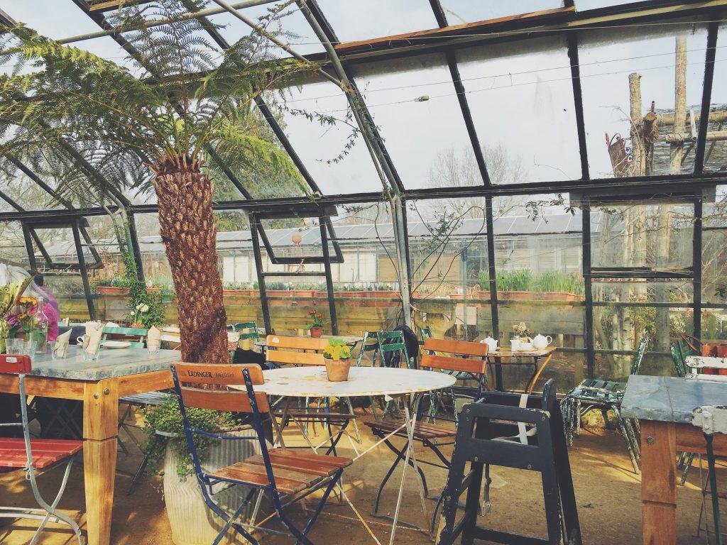 petersham nurseries