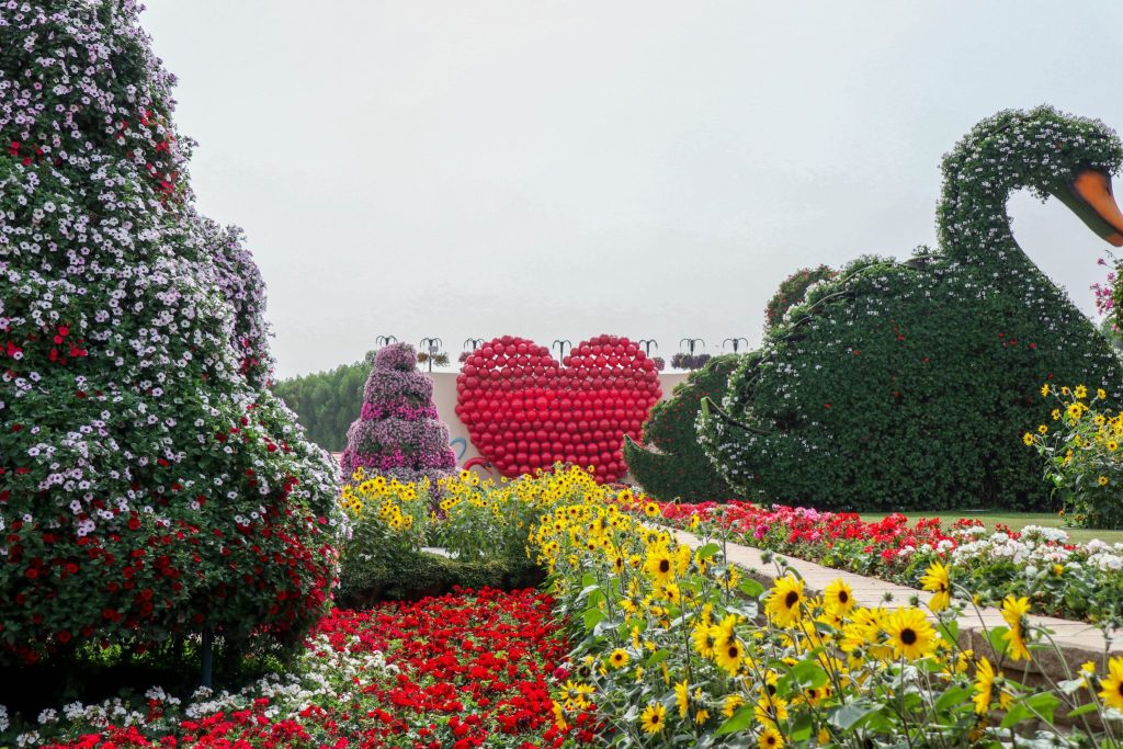 22 Reasons Why You Should Visit The Dubai Miracle Garden