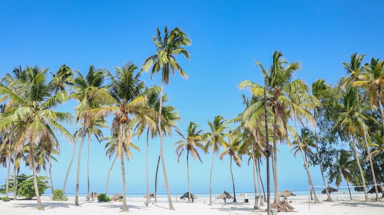 Why Zanzibar should be on your bucket list