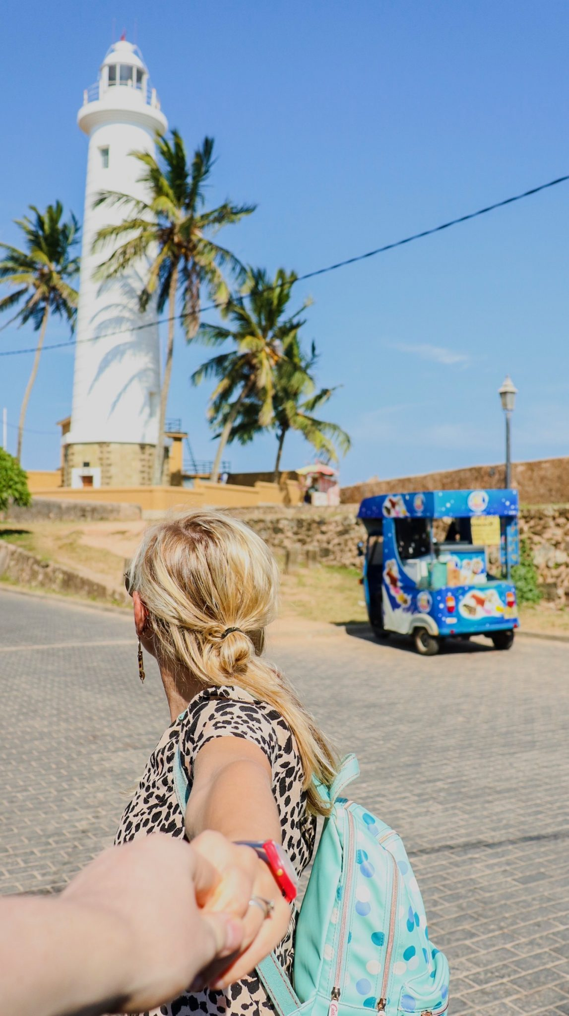 things to do in and around Mirissa - Galle