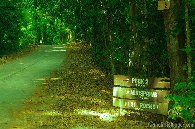 Directions in Mt. Makiling.