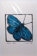 Adonis Blue - reduction