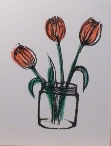 Two colour tulips