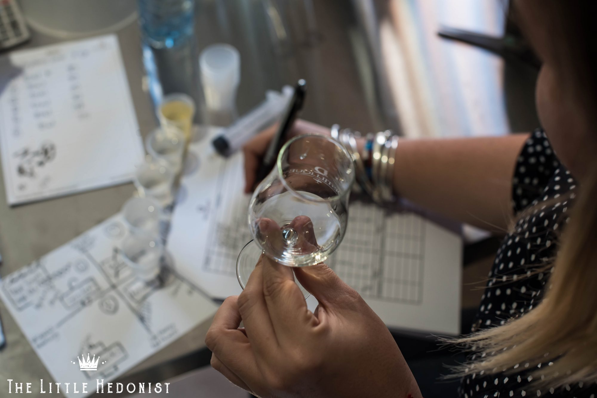 {EXPERIENCE} Distillique Gin & Botanicals Masterclass