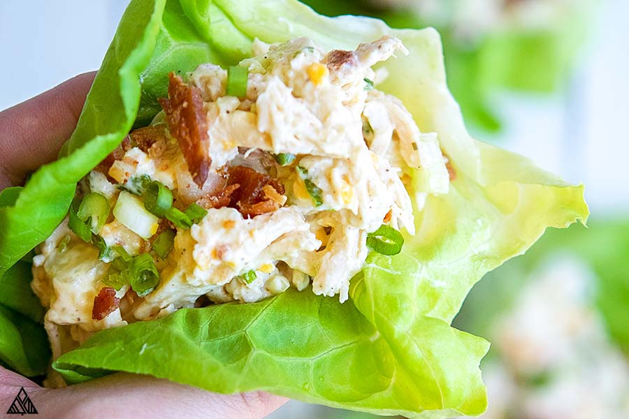Hand holding a lettuce wrap rotisserie chicken salad