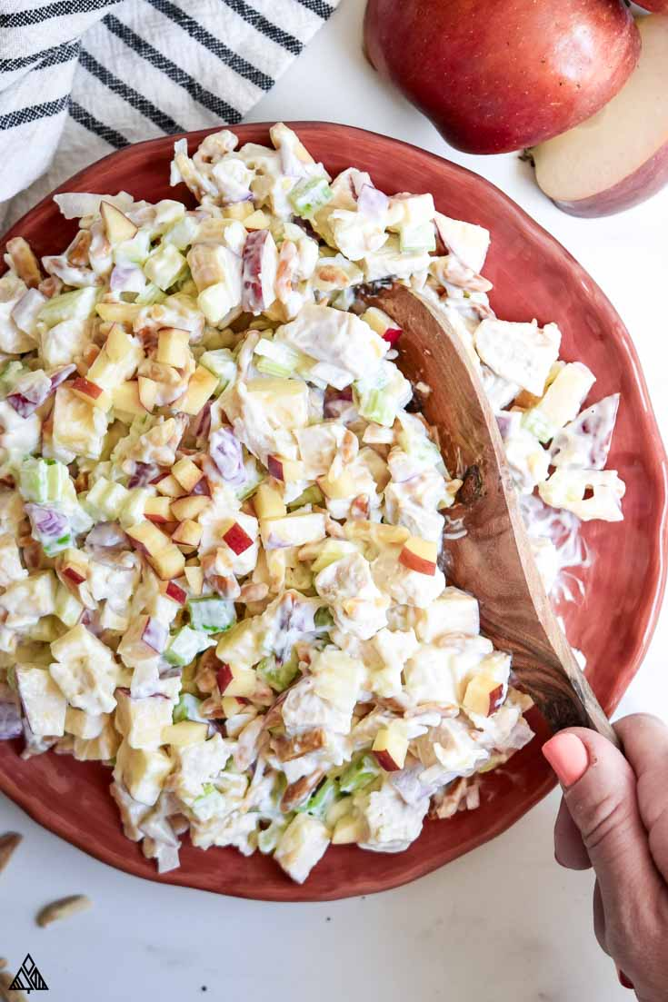 Chicken salad with apples in a plate