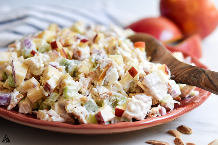 Closer look of chicken salad with apples in a plate