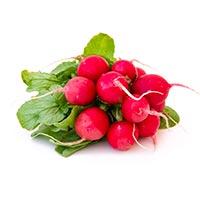 low carb vegetables, radish