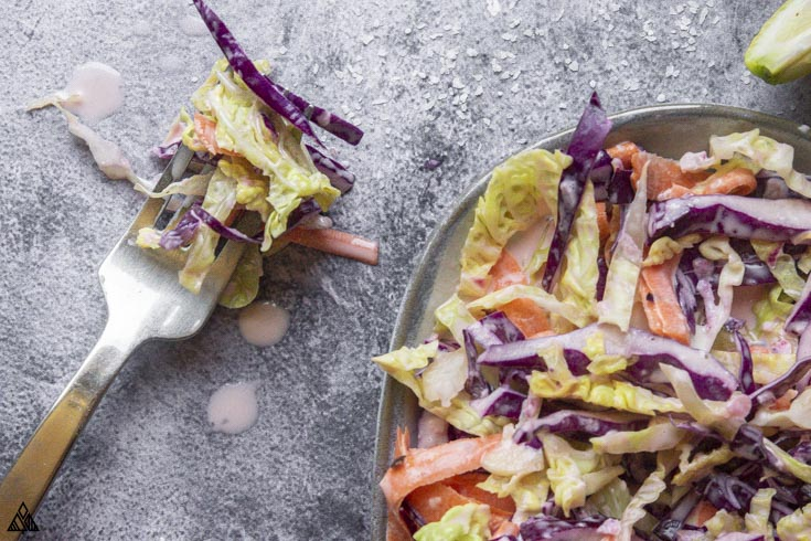 Fork with low carb coleslaw and a bowl on the side