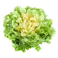 low carb vegetables, lettuce