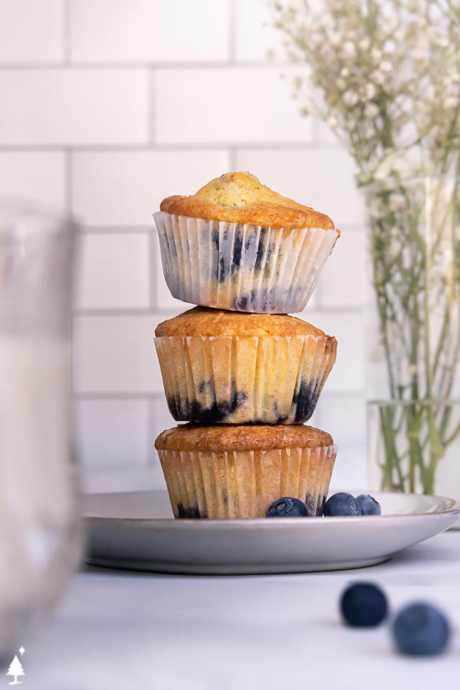 a stack of best blueberry muffin recipe on a plate