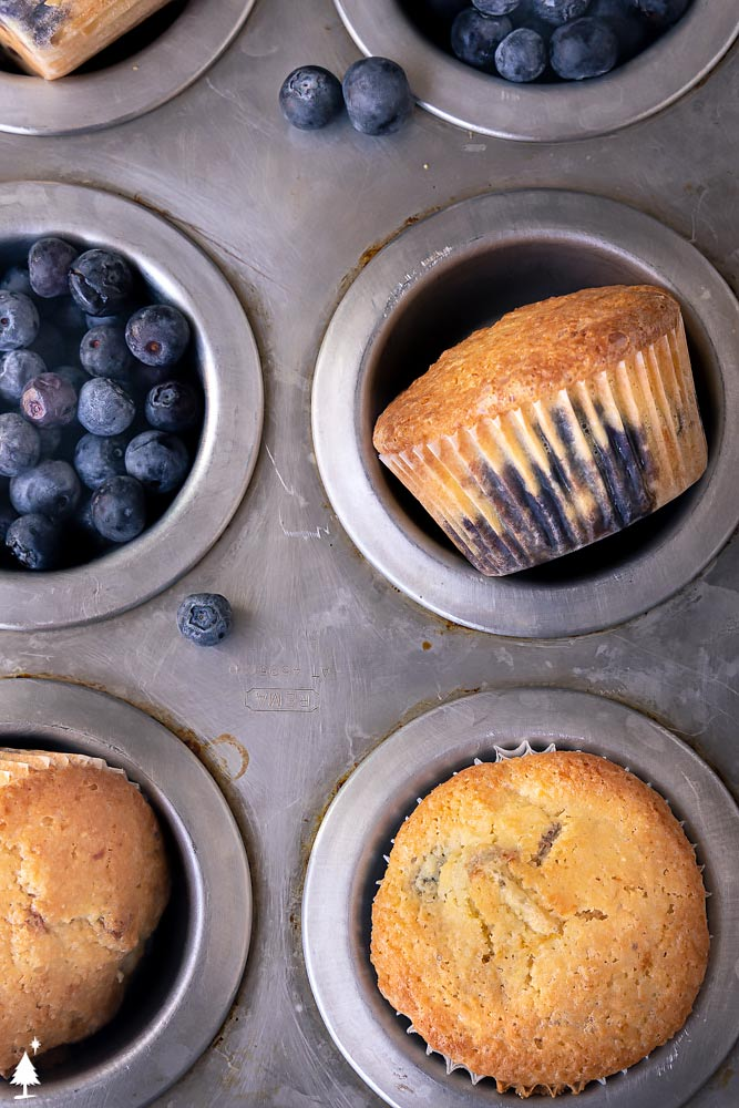 closer view of homemade blueberry muffins in a muffin pan