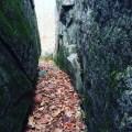 split view 2