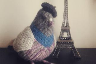 Pascal the giant knitted pigeon