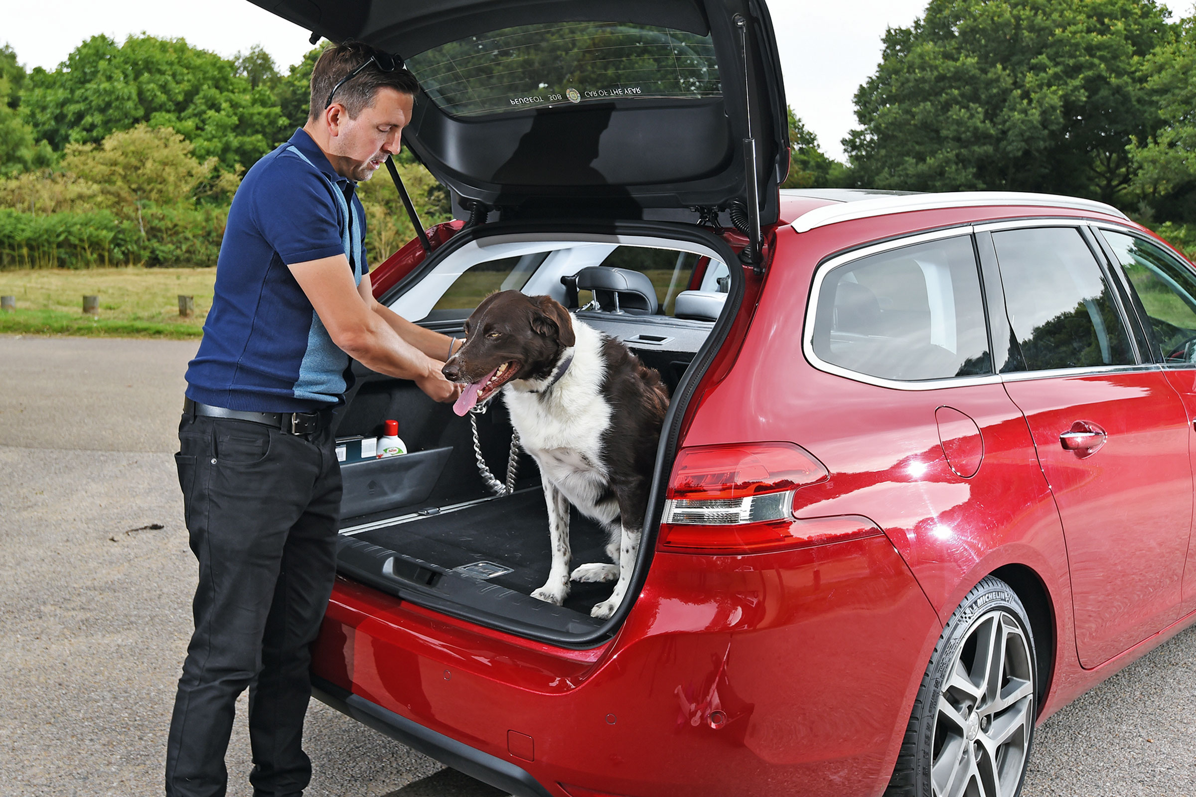 5 Tips for Travelling with Dogs in the Car