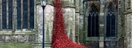 Poppy cascade at Hereford Cathedral 2017