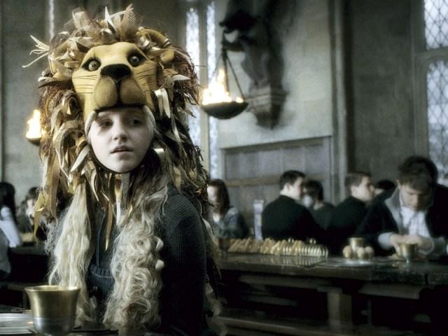 lionhead-luna-lovegood-m